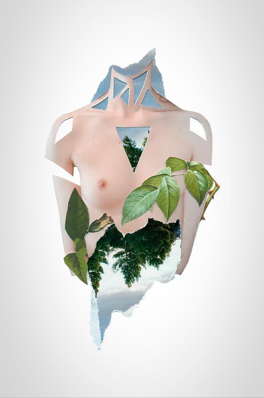 collages-florales-rocio-montoya-06